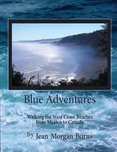 blueadventurescover